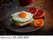 Купить «Grain bread with fried egg, tomato, cheese and bacon on ceramic plate with red orange to desert», фото № 30288484, снято 11 марта 2019 г. (c) Julia Shepeleva / Фотобанк Лори