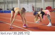 Купить «Two young athletic women warming up and doing stretching», видеоролик № 30295112, снято 21 марта 2019 г. (c) Константин Шишкин / Фотобанк Лори