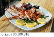 Купить «Prawns, langoustines and clams on white plate», фото № 30300316, снято 26 января 2018 г. (c) Яков Филимонов / Фотобанк Лори