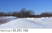 Купить «Опушка леса, мороз, ветер», видеоролик № 30301188, снято 13 марта 2019 г. (c) Александр Романов / Фотобанк Лори