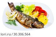 Купить «Grilled trout with vegetable garnish», фото № 30306564, снято 21 сентября 2019 г. (c) Яков Филимонов / Фотобанк Лори