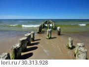 Купить «Old wooden breakwater on sandy shore of Baltic sea», фото № 30313928, снято 20 июля 2013 г. (c) Сергей Трофименко / Фотобанк Лори