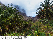 Купить «Fabulous Masca mountain gorge the most visited tourist attraction on Tenerife», фото № 30322904, снято 13 сентября 2015 г. (c) Ирина Мойсеева / Фотобанк Лори