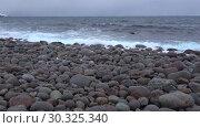 Купить «Прибой на пляже круглых камней. Побережье Баренцева моря. Териберка, Россия», видеоролик № 30325340, снято 19 февраля 2019 г. (c) Виктор Карасев / Фотобанк Лори