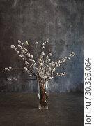 Купить «vase with willow flowers cats on a dark vintage background with space for text», фото № 30326064, снято 2 мая 2018 г. (c) Tetiana Chugunova / Фотобанк Лори