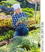 Купить «Girl farmer harvesting artichokes in the garden», фото № 30347536, снято 7 марта 2019 г. (c) Яков Филимонов / Фотобанк Лори