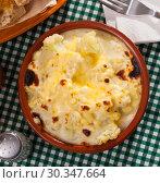 Купить «Appetizing cauliflower and cheese casserole for breakfast», фото № 30347664, снято 20 мая 2019 г. (c) Яков Филимонов / Фотобанк Лори
