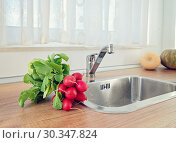 Bunch of unwashed red radish on kitchen. Стоковое фото, фотограф Kira_Yan / Фотобанк Лори