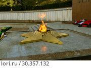 Купить «Город Сочи. Мемориальный комплекс. Вечный огонь», фото № 30357132, снято 20 марта 2019 г. (c) Andrey  Konarev / Фотобанк Лори