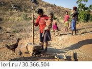 Купить «Family of farmers, near Antananarivo, Madagascar.», фото № 30366504, снято 24 июня 2019 г. (c) age Fotostock / Фотобанк Лори
