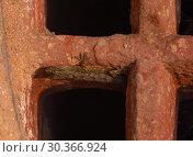 Купить «Lizard in the ruins», фото № 30366924, снято 16 ноября 2012 г. (c) Игорь Жоров / Фотобанк Лори