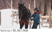 Купить «Winter time. A woman about to get on the horse», видеоролик № 30367908, снято 23 июля 2019 г. (c) Константин Шишкин / Фотобанк Лори