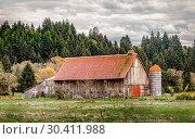 Купить «Old Abandoned Barn, Color Image», фото № 30411988, снято 5 декабря 2015 г. (c) easy Fotostock / Фотобанк Лори