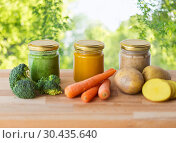 Купить «vegetable puree or baby food in glass jars», фото № 30435640, снято 21 февраля 2017 г. (c) Syda Productions / Фотобанк Лори