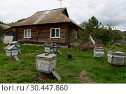 Купить «Пчелиные ульи у дома в горном посёлке Генералка Алтайского края», фото № 30447860, снято 4 сентября 2018 г. (c) Free Wind / Фотобанк Лори