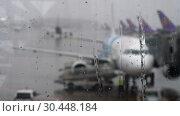 Купить «Tropical rain in the airport», видеоролик № 30448184, снято 11 марта 2019 г. (c) Игорь Жоров / Фотобанк Лори