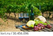 Купить «Red wine, cheese, bread and grapes against vineyard», фото № 30456096, снято 22 мая 2019 г. (c) Яков Филимонов / Фотобанк Лори