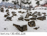 The Damaged OId Jewish Cemetery during siege of Sarajevo by Serbs. The second largest Jewish cemetery in Europe after Prague's Old Jewish Cemetery (2018 год). Стоковое фото, фотограф Николай Коржов / Фотобанк Лори