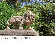 Купить «Одна из парных скульптур львов возле лестницы старого парка крымского Юсуповского дворца», фото № 30456380, снято 13 сентября 2018 г. (c) Наталья Гармашева / Фотобанк Лори