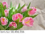 Купить «Букет розовых тюльпанов на фоне мятой бумаги», эксклюзивное фото № 30456556, снято 14 февраля 2019 г. (c) Dmitry29 / Фотобанк Лори