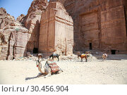Купить «Along the Main Trail, Petra, Jordan.», фото № 30456904, снято 7 сентября 2018 г. (c) age Fotostock / Фотобанк Лори
