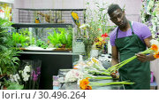 Купить «Smiling African American man professional florist offering fresh gerberas at his flower shop», видеоролик № 30496264, снято 26 марта 2019 г. (c) Яков Филимонов / Фотобанк Лори