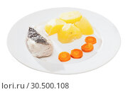 Купить «Steamed whiting with potatoes and carrot», фото № 30500108, снято 20 апреля 2019 г. (c) Яков Филимонов / Фотобанк Лори