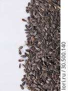 Купить «Sunflower black seeds on white background close up, nobody», фото № 30500140, снято 23 мая 2019 г. (c) Яков Филимонов / Фотобанк Лори