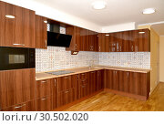 Купить «Встроенная мебель на современной кухне», фото № 30502020, снято 6 апреля 2019 г. (c) Ирина Борсученко / Фотобанк Лори