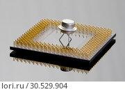 Купить «Concept of the processor and transistor», фото № 30529904, снято 29 января 2010 г. (c) Tryapitsyn Sergiy / Фотобанк Лори
