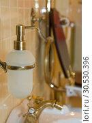 Купить «Luxury toilet. Liquid soap», фото № 30530396, снято 22 апреля 2010 г. (c) Tryapitsyn Sergiy / Фотобанк Лори
