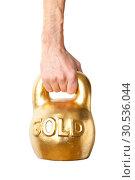 Купить «A hand holding heavy weight of gold», фото № 30536044, снято 13 января 2011 г. (c) Tryapitsyn Sergiy / Фотобанк Лори