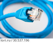 Купить «Network plug», фото № 30537196, снято 20 мая 2011 г. (c) Tryapitsyn Sergiy / Фотобанк Лори