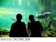 Купить «Couple at the oceanarium», фото № 30540304, снято 7 июля 2013 г. (c) Tryapitsyn Sergiy / Фотобанк Лори