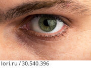 Купить «Male eye», фото № 30540396, снято 5 августа 2013 г. (c) Tryapitsyn Sergiy / Фотобанк Лори