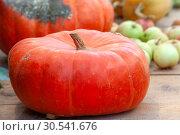 Купить «Яркая тыква и яблоки на деревянном столе. Осенний урожай», фото № 30541676, снято 17 сентября 2018 г. (c) Татьяна Белова / Фотобанк Лори