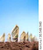 Купить «American dollars grow from the ground», фото № 30548940, снято 23 июля 2014 г. (c) Tryapitsyn Sergiy / Фотобанк Лори