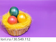 Купить «Easter eggs dyed in golden yellow pink green color in a nest in a wicker basket on a lilac background», фото № 30549112, снято 31 марта 2019 г. (c) Светлана Евграфова / Фотобанк Лори