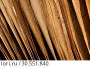 Купить «Old book», фото № 30551840, снято 21 октября 2011 г. (c) Tryapitsyn Sergiy / Фотобанк Лори