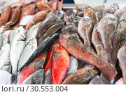 Купить «Fish on the market», фото № 30553004, снято 20 июля 2015 г. (c) Tryapitsyn Sergiy / Фотобанк Лори
