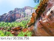 Купить «Colorful nature landscape of Zion National Park», фото № 30556756, снято 23 июня 2016 г. (c) Tryapitsyn Sergiy / Фотобанк Лори