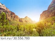 Купить «Virgin view of Zion National Park at sunset», фото № 30556780, снято 23 июня 2016 г. (c) Tryapitsyn Sergiy / Фотобанк Лори
