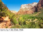 Купить «Amazing view of canyon at Zion National Park», фото № 30556784, снято 23 июня 2016 г. (c) Tryapitsyn Sergiy / Фотобанк Лори