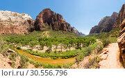 Купить «Amazing view of canyon at Zion National Park», фото № 30556796, снято 23 июня 2016 г. (c) Tryapitsyn Sergiy / Фотобанк Лори