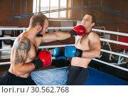 Купить «Boxer sents his opponent to the knockout.», фото № 30562768, снято 7 октября 2016 г. (c) Tryapitsyn Sergiy / Фотобанк Лори