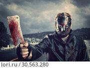 Купить «Butcher in hockey mask with bloody meat cleaver», фото № 30563280, снято 7 ноября 2016 г. (c) Tryapitsyn Sergiy / Фотобанк Лори