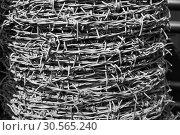 Купить «Barbed wire roll on black background», фото № 30565240, снято 21 февраля 2017 г. (c) Tryapitsyn Sergiy / Фотобанк Лори