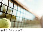 Ball in net closeup, big tennis concept. Стоковое фото, фотограф Tryapitsyn Sergiy / Фотобанк Лори