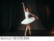 Graceful ballerina dancing in ballet class. Стоковое фото, фотограф Tryapitsyn Sergiy / Фотобанк Лори
