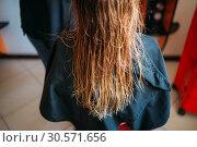Купить «Female customer with wet hair, hairdressing salon», фото № 30571656, снято 29 апреля 2018 г. (c) Tryapitsyn Sergiy / Фотобанк Лори